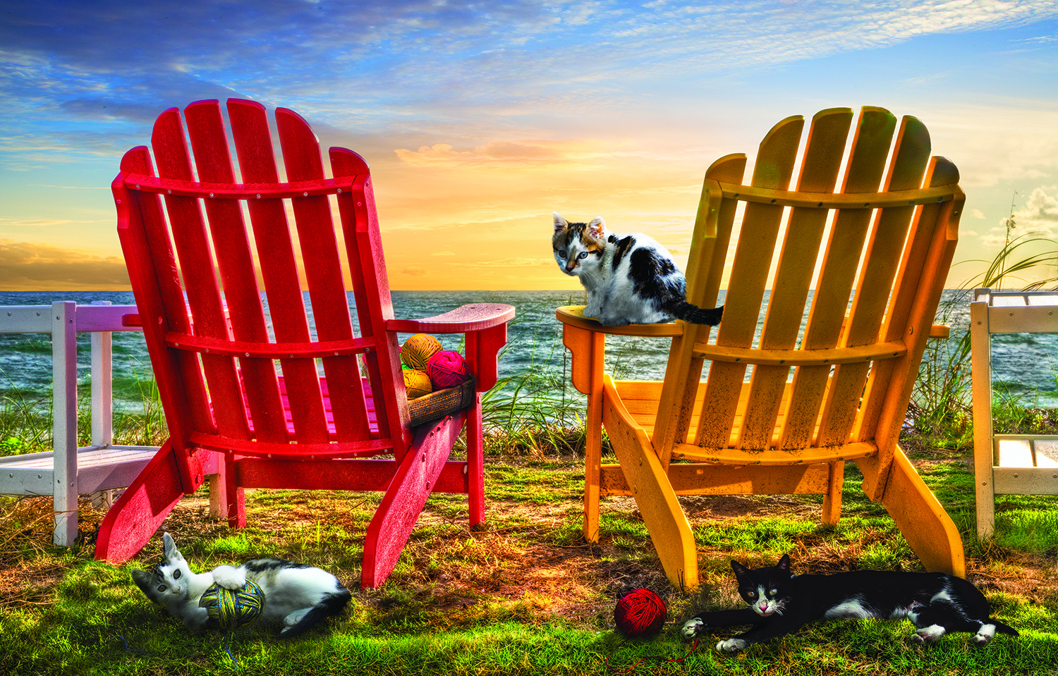 Cat Nap at the Beach 1000 Piece Jigsaw Puzzle by SunsOut