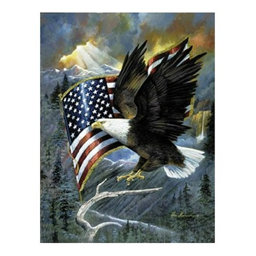American Eagle 500 pc Jigsaw Puzzle