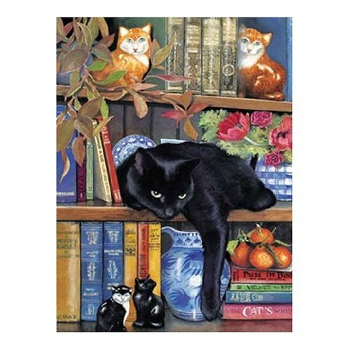 On the Shelf 1000 pc Jigsaw Puzzle