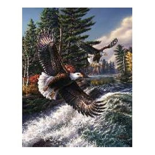 Whitewater Eagle 500 pc Jigsaw Puzzle