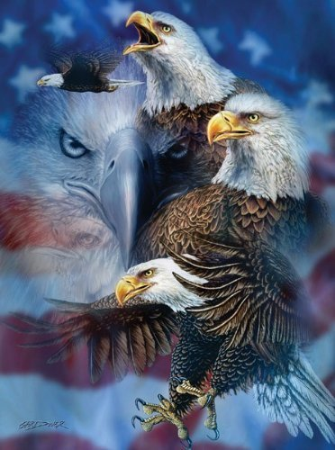 Patriotic Eagles  1000 pc Jigsaw Puzzle