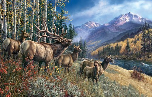 SunsOut Elk Anthem 1000 pc Jigsaw Puzzle