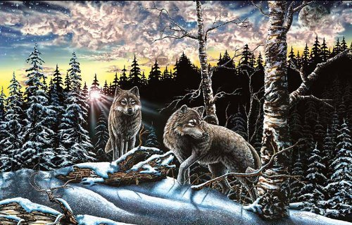 15 Wolves 1000pc Jigsaw Puzzle by Stephen Michael Gardner