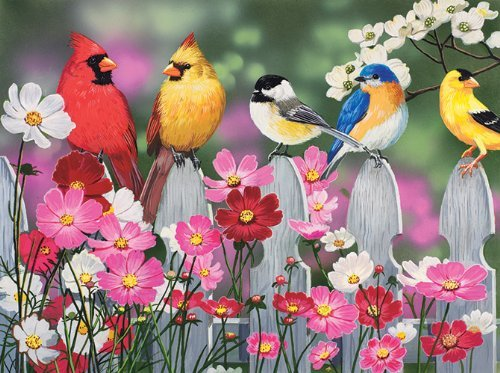 Songbirds and Cosmos 500 pc Jigsaw Puzzle