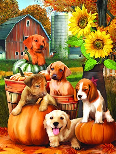 Autumn Puppies 300 pc Jigsaw Puzzle by SunsOut