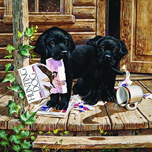 Cabin Fever 300 pc Jigsaw Puzzle by SunsOut